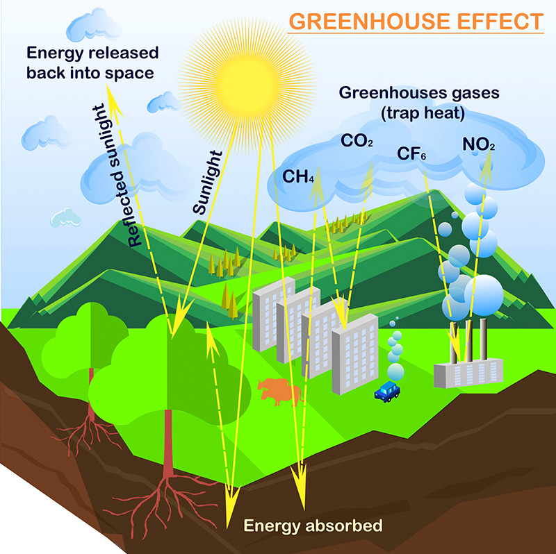 a vector illustration of the greenhouse effect